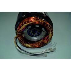 Статор/ротор 346162-12 (4EC-6.2; 4DC-5.2)